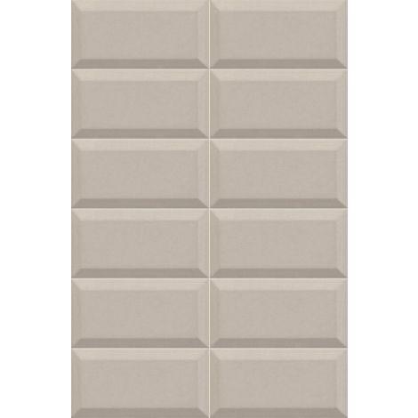 10x20 BISSEL GRIS PLATA